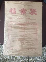 (青县中阳)200g档案袋(个)